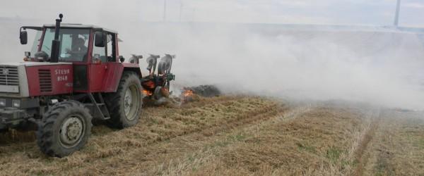 dscn2145-600x250-crop-42-52.jpg