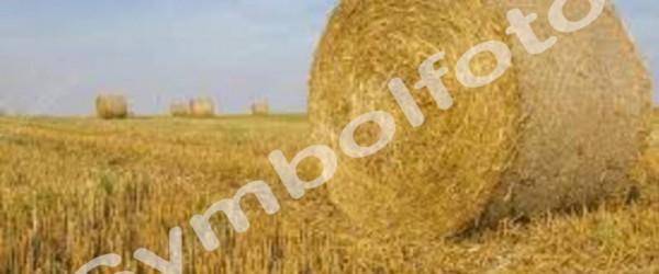 stroh-rundballen-kopie-600x250-crop-51-49.jpg